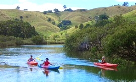 puhoi-river-kayaking_270